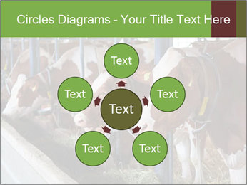 0000085514 PowerPoint Templates - Slide 78