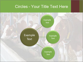 0000085514 PowerPoint Templates - Slide 79