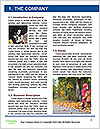 0000085517 Word Template - Page 3