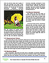 0000085517 Word Template - Page 4