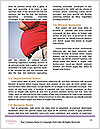 0000085521 Word Templates - Page 4