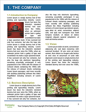 0000085528 Word Template - Page 3