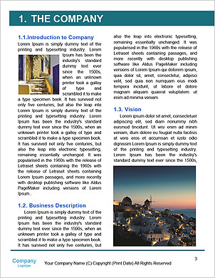 0000085532 Word Template - Page 3