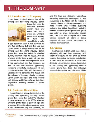 0000085533 Word Template - Page 3