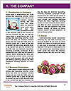 0000085535 Word Template - Page 3