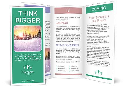 0000085545 Brochure Template