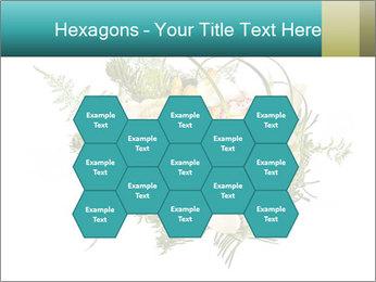 0000085553 PowerPoint Templates - Slide 44