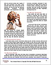 0000085555 Word Templates - Page 4