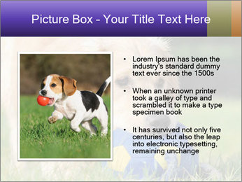 0000085560 PowerPoint Templates - Slide 13