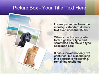 0000085560 PowerPoint Templates - Slide 17