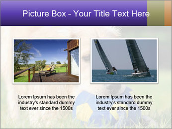 0000085560 PowerPoint Templates - Slide 18