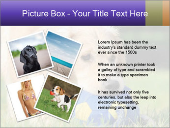0000085560 PowerPoint Templates - Slide 23