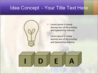 0000085560 PowerPoint Templates - Slide 80