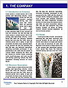 0000085565 Word Templates - Page 3