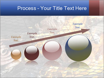 0000085567 PowerPoint Template - Slide 87