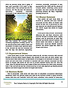 0000085572 Word Template - Page 4