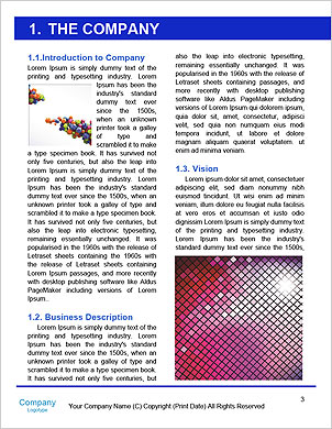 0000085573 Word Template - Page 3