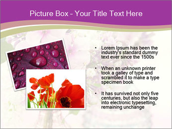 0000085584 PowerPoint Template - Slide 20