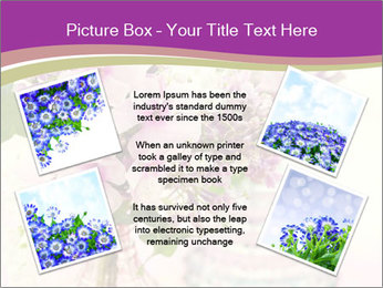 0000085584 PowerPoint Template - Slide 24