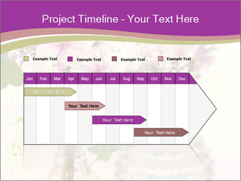 0000085584 PowerPoint Template - Slide 25