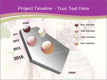0000085584 PowerPoint Template - Slide 26
