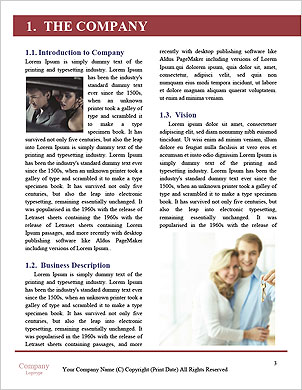 0000085588 Word Template - Page 3