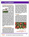 0000085590 Word Template - Page 3