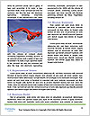 0000085593 Word Template - Page 4