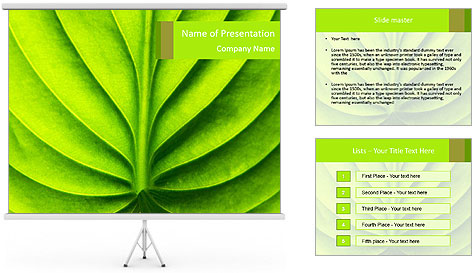 0000085594 PowerPoint Template