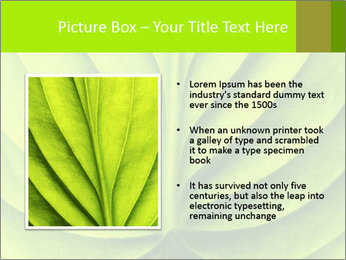 0000085594 PowerPoint Template - Slide 13