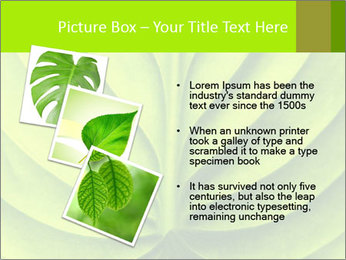 0000085594 PowerPoint Templates - Slide 17