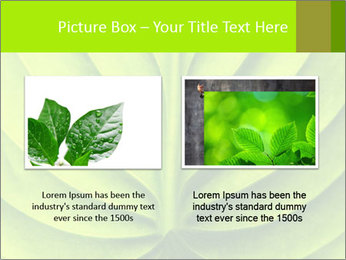 0000085594 PowerPoint Templates - Slide 18