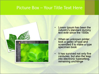 0000085594 PowerPoint Templates - Slide 20