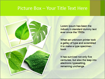 0000085594 PowerPoint Templates - Slide 23