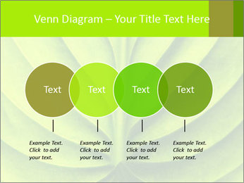 0000085594 PowerPoint Templates - Slide 32