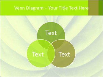 0000085594 PowerPoint Template - Slide 33