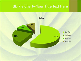 0000085594 PowerPoint Templates - Slide 35