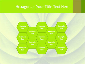 0000085594 PowerPoint Template - Slide 44