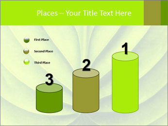 0000085594 PowerPoint Templates - Slide 65