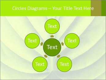 0000085594 PowerPoint Templates - Slide 78