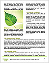 0000085594 Word Templates - Page 4
