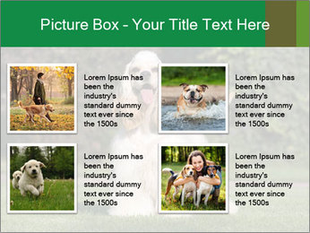 0000085599 PowerPoint Template - Slide 14