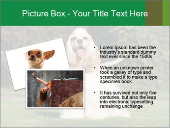 0000085599 PowerPoint Template - Slide 20