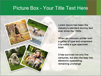 0000085599 PowerPoint Template - Slide 23