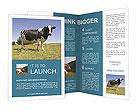 0000085603 Brochure Template
