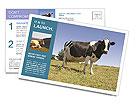 0000085603 Postcard Templates