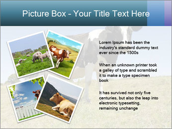0000085603 PowerPoint Template - Slide 23