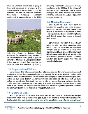 0000085603 Word Template - Page 4