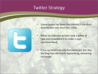 0000085604 PowerPoint Templates - Slide 9