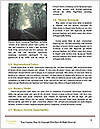 0000085619 Word Template - Page 4